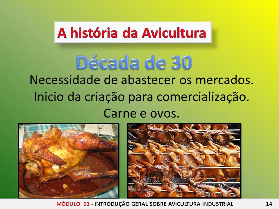 15 Necessidade de abastecer os mercados. Inicio da criação para comercialização. Carne e ovos. MÓDULO 01 - INTRODUÇÃO GERAL SOBRE AVICULTURA INDUSTRIA