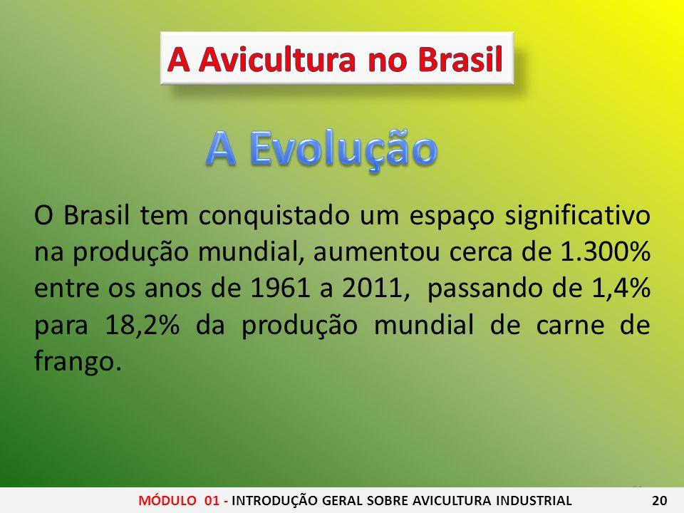 21 O Brasil tem conquistado um espaço significativo na produção mundial, aumentou cerca de 1.300% entre os anos de 1961 a 2011, passando de 1,4% para
