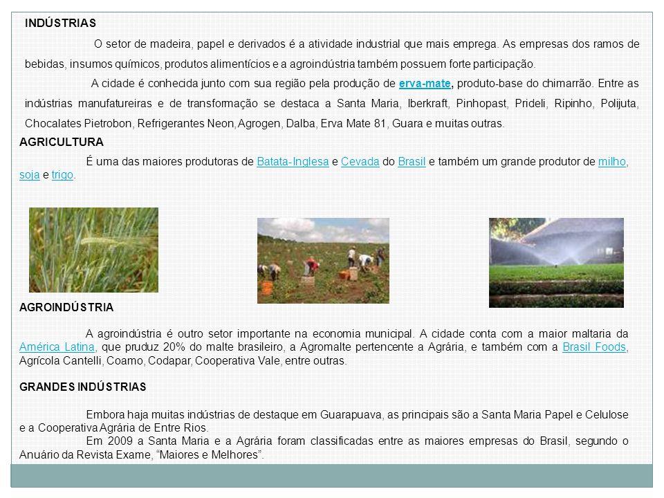 É uma das maiores produtoras de Batata-Inglesa e Cevada do Brasil e também um grande produtor de milho, soja e trigo.Batata-InglesaCevadaBrasilmilho s