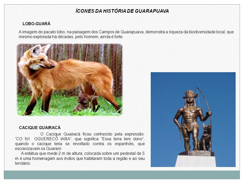 LOBO-GUARÁ CACIQUE GUAIRACÁ O Cacique Guairacá ficou conhecido pela expressão: CO IVI OGUERECÔ IARA, que significa Essa terra tem dono, quando o caciq