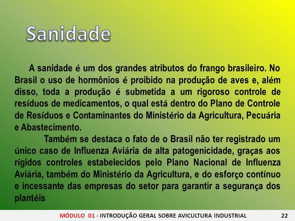 23 A sanidade é um dos grandes atributos do frango brasileiro. No Brasil o uso de hormônios é proibido na produ ç ão de aves e, al é m disso, toda a p