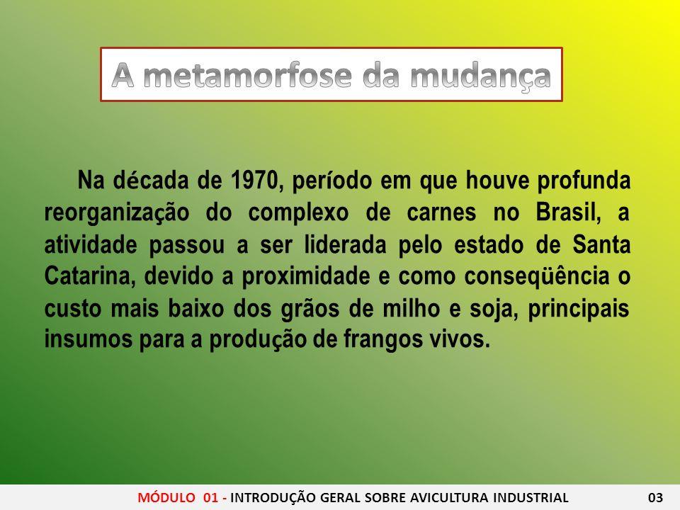 Na d é cada de 1970, per í odo em que houve profunda reorganiza ç ão do complexo de carnes no Brasil, a atividade passou a ser liderada pelo estado de
