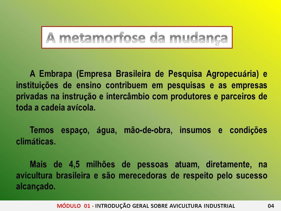 A Embrapa (Empresa Brasileira de Pesquisa Agropecu á ria) e institui ç ões de ensino contribuem em pesquisas e as empresas privadas na instru ç ão e i