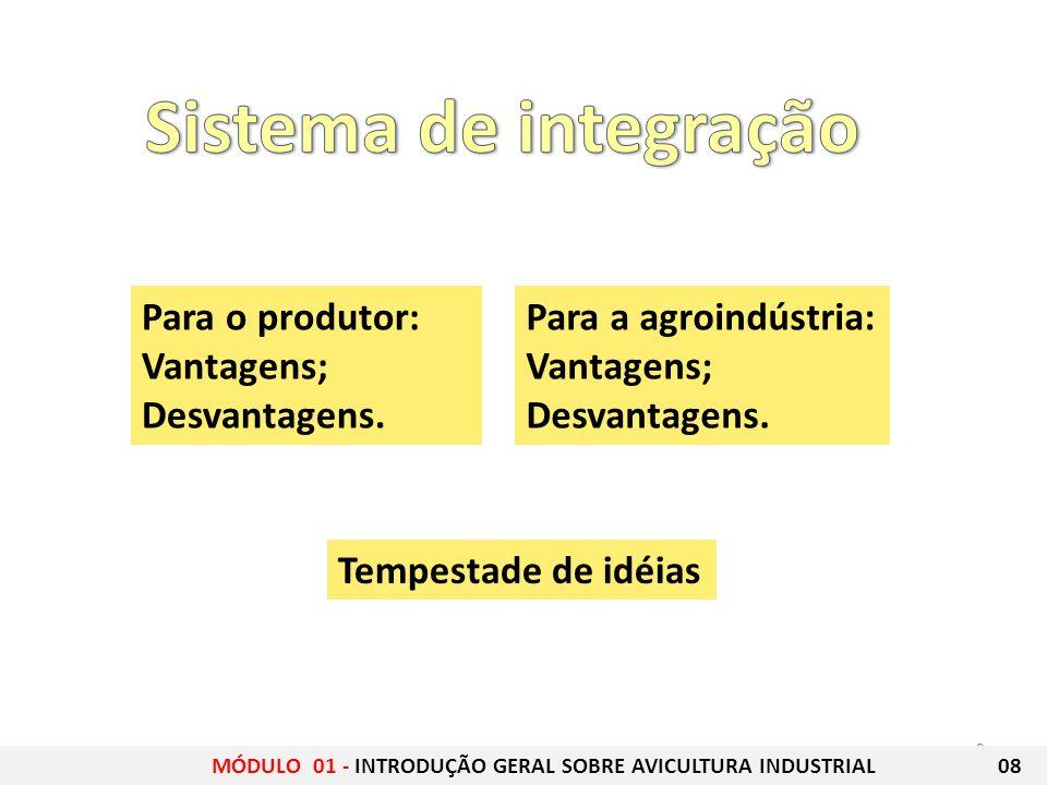 9 Para o produtor: Vantagens; Desvantagens. Para a agroindústria: Vantagens; Desvantagens. Tempestade de idéias MÓDULO 01 - INTRODUÇÃO GERAL SOBRE AVI