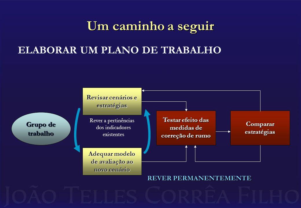 Um caminho a seguir ELABORAR UM PLANO DE TRABALHO Grupo de trabalho Revisar cenários e estratégias Adequar modelo de avaliação ao novo cenário Testar efeito das medidas de correção de rumo Comparar estratégias Rever a pertinências dos indicadores existentes REVER PERMANENTEMENTE