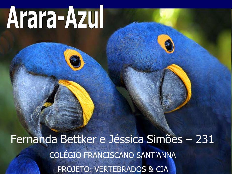 Fernanda Bettker e Jéssica Simões – 231 COLÉGIO FRANCISCANO SANTANNA PROJETO: VERTEBRADOS & CIA