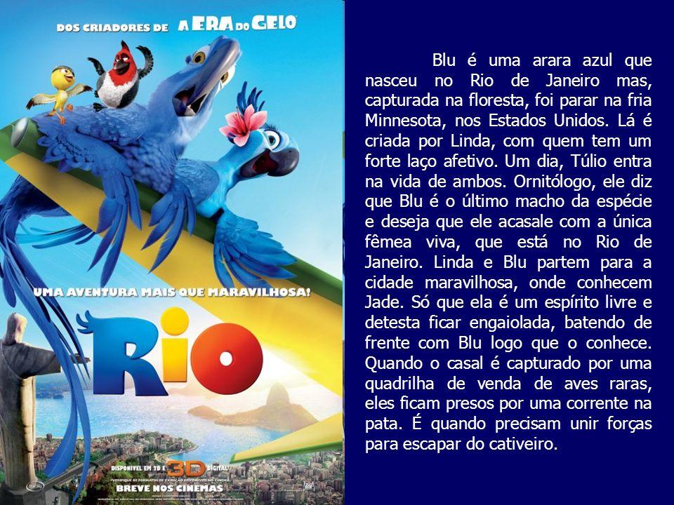 Blu é uma arara azul que nasceu no Rio de Janeiro mas, capturada na floresta, foi parar na fria Minnesota, nos Estados Unidos. Lá é criada por Linda,
