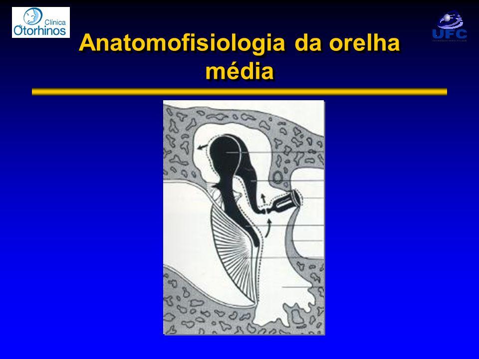 Anatomofisiologia da Orelha Interna