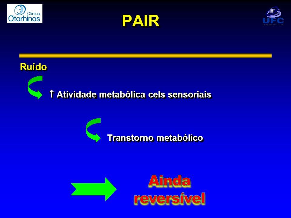 PAIRPAIR Ruído Atividade metabólica cels sensoriais Atividade metabólica cels sensoriais Transtorno metabólico Ruído Atividade metabólica cels sensori