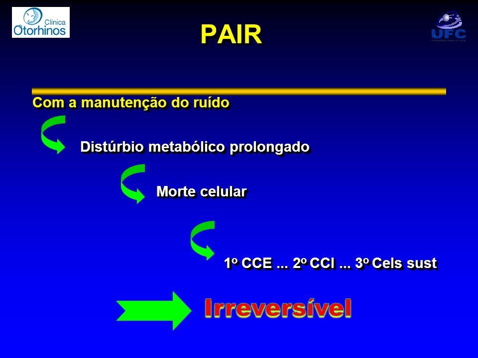 PAIRPAIR Com a manutenção do ruído Distúrbio metabólico prolongado Morte celular Morte celular 1 o CCE... 2 o CCI... 3 o Cels sust Com a manutenção do