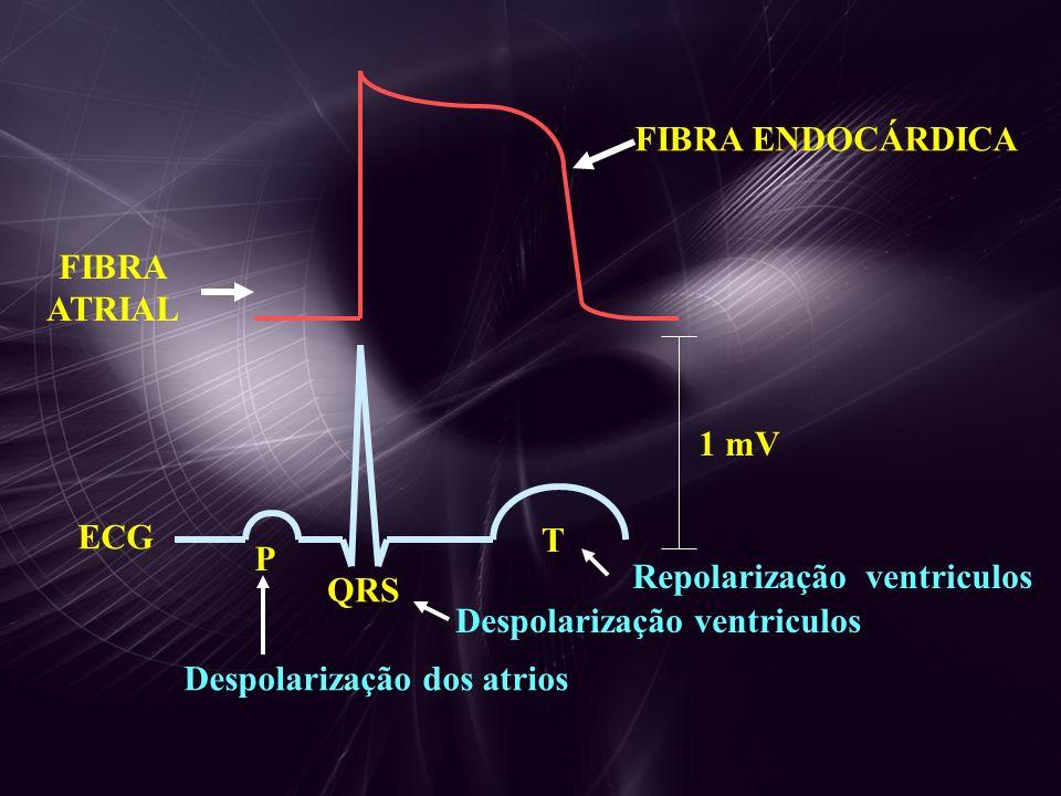 DERIVAÇÕES PERIFÉRICAS D1D1 D2D2 D3D3 Perna Esq Braço DirBraço Esq Standartização Derivação bipolar Derivação unipolar