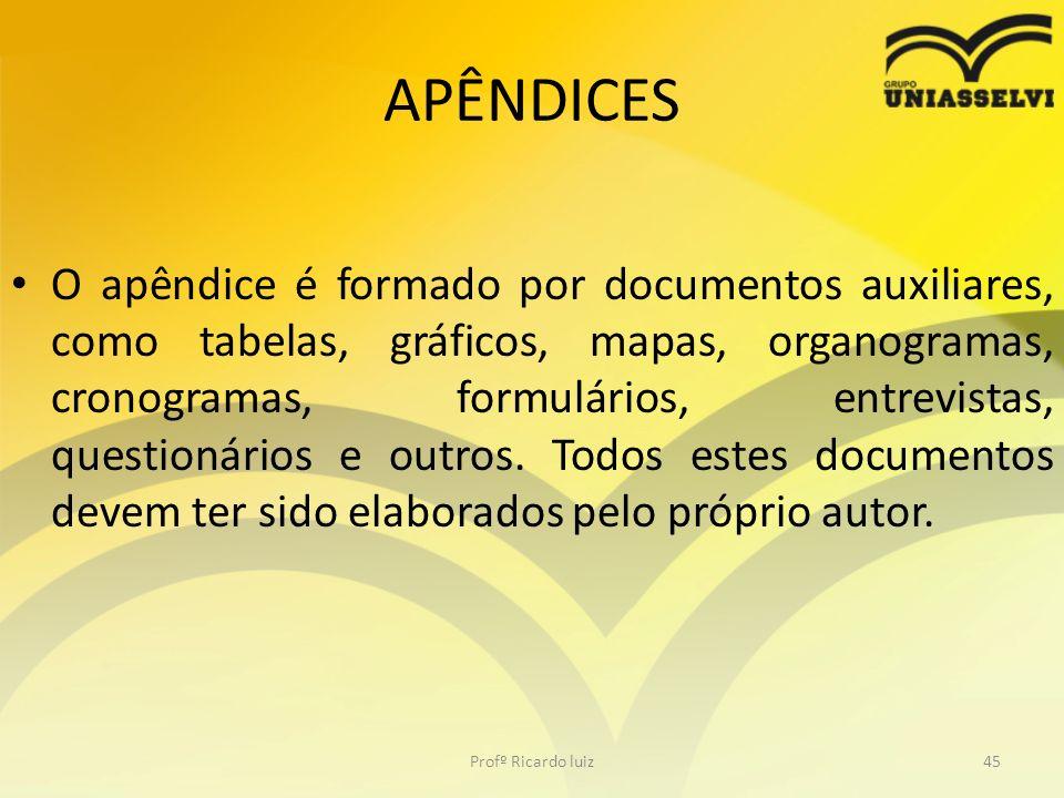 APÊNDICES O apêndice é formado por documentos auxiliares, como tabelas, gráficos, mapas, organogramas, cronogramas, formulários, entrevistas, question