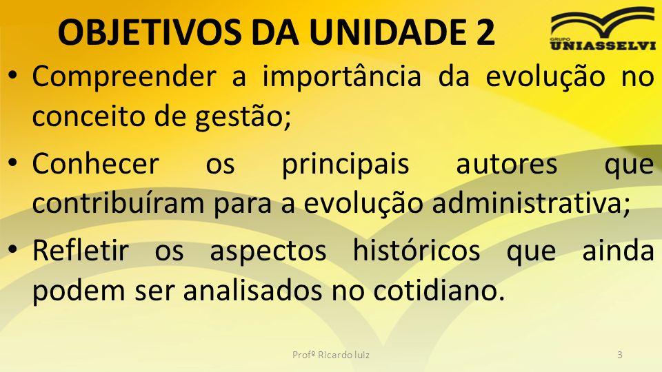 TÓPICO 3 - ABORDAGENS EVOLUTIVAS DE GESTÃO Profº Ricardo luiz44