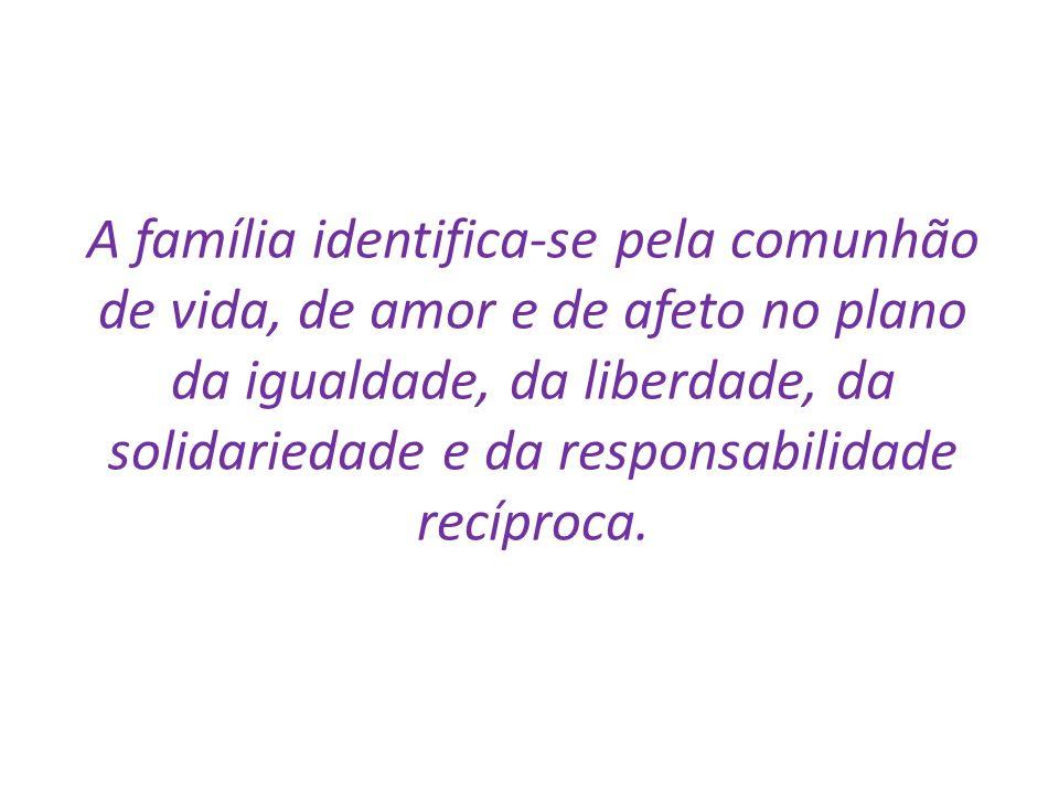 A família identifica-se pela comunhão de vida, de amor e de afeto no plano da igualdade, da liberdade, da solidariedade e da responsabilidade recíproc