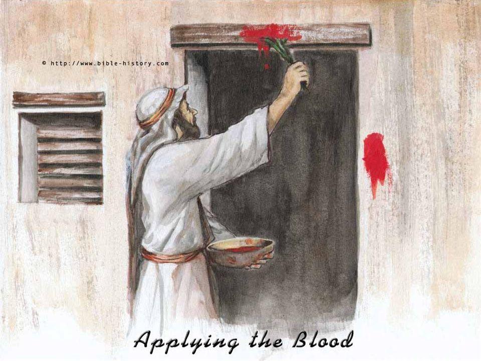 A 1ª Leitura fala da Instituição da Páscoa Judaica. (Ex 12,1-8.11-14 ) Deus ordena aos hebreus a imolarem um Cordeiro perfeito, a tingirem com seu san