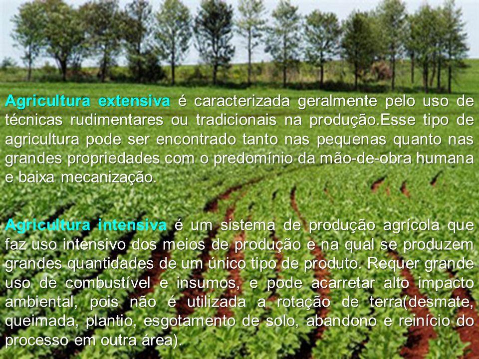 Agricultura extensiva é caracterizada geralmente pelo uso de técnicas rudimentares ou tradicionais na produção.Esse tipo de agricultura pode ser encontrado tanto nas pequenas quanto nas grandes propriedades com o predomínio da mão-de-obra humana e baixa mecanização.