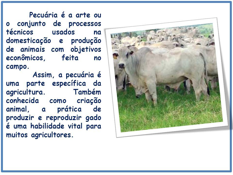 Pecuária é a arte ou o conjunto de processos técnicos usados na domesticação e produção de animais com objetivos econômicos, feita no campo.