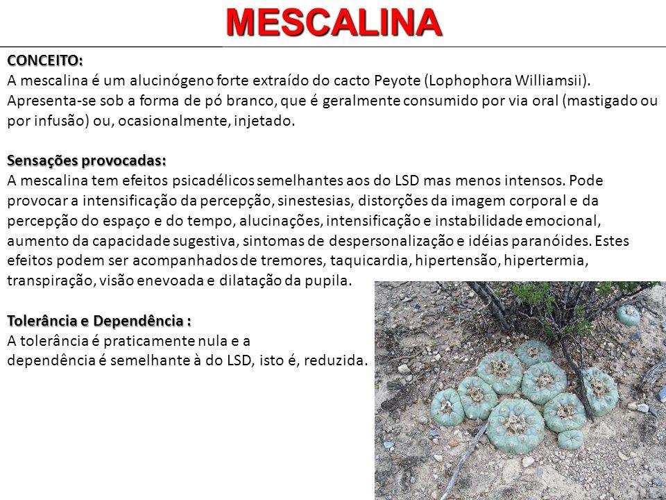 MESCALINACONCEITO: A mescalina é um alucinógeno forte extraído do cacto Peyote (Lophophora Williamsii). Apresenta-se sob a forma de pó branco, que é g