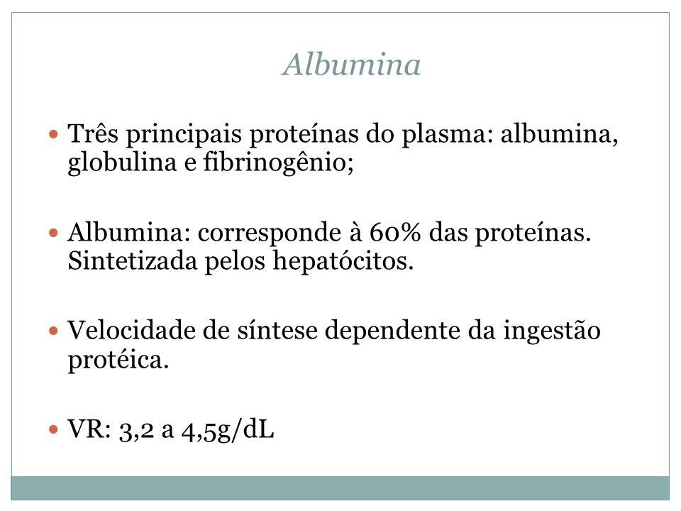 Três principais proteínas do plasma: albumina, globulina e fibrinogênio; Albumina: corresponde à 60% das proteínas. Sintetizada pelos hepatócitos. Vel