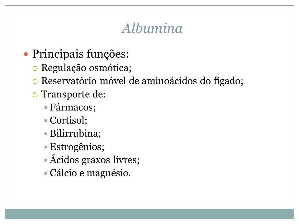 Albumina Principais funções: Regulação osmótica; Reservatório móvel de aminoácidos do fígado; Transporte de: Fármacos; Cortisol; Bilirrubina; Estrogênios; Ácidos graxos livres; Cálcio e magnésio.