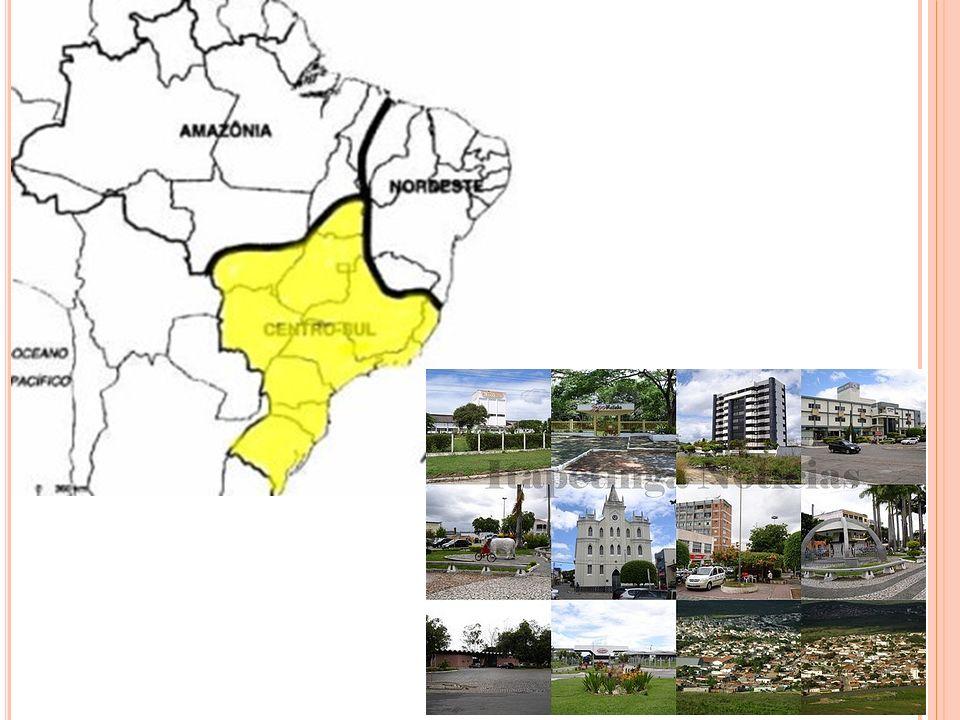 A variada altitude e a grande extensão norte- sul dessa região são dois dos mais importantes fatores que determinam as diversas paisagens do Centro-Sul