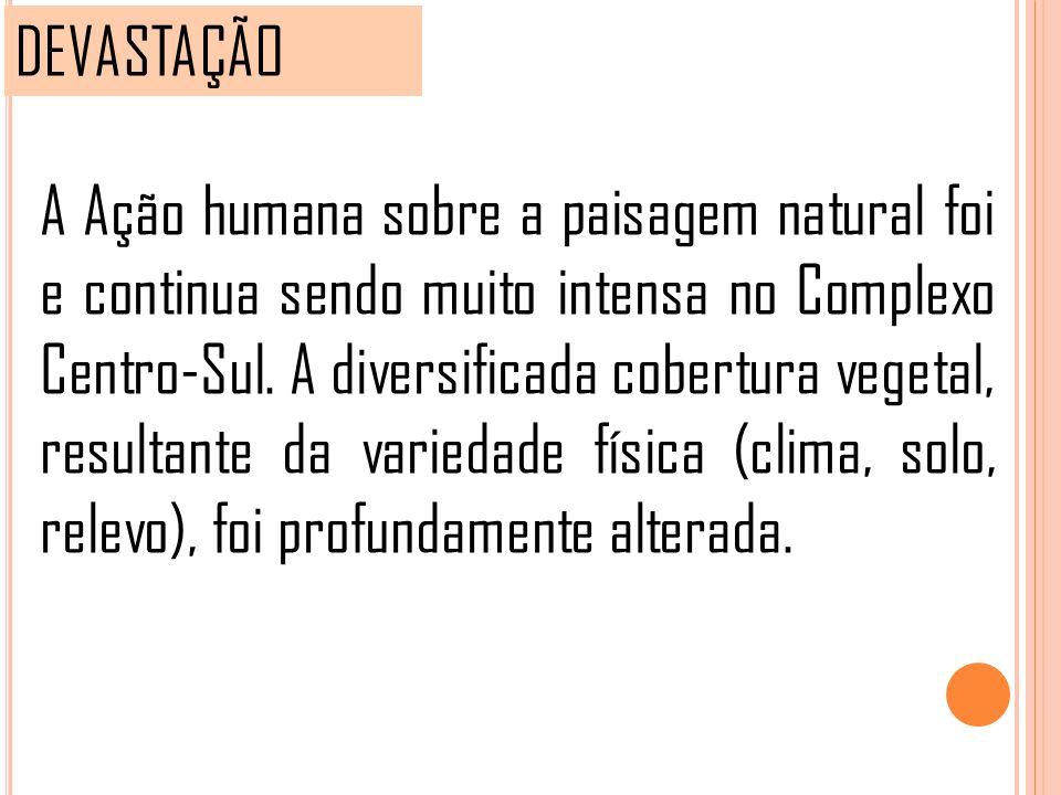 DEVASTAÇÃO A Ação humana sobre a paisagem natural foi e continua sendo muito intensa no Complexo Centro-Sul. A diversificada cobertura vegetal, result