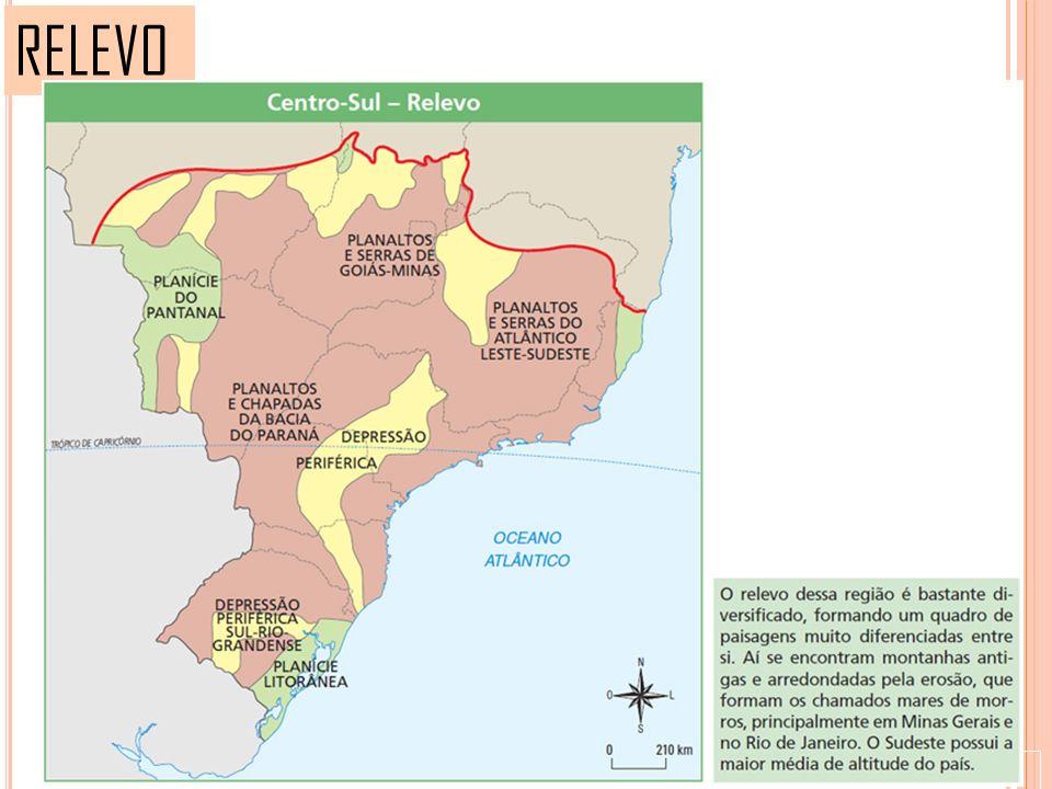 PAISAGEM VEGETAL A Ação humana sobre a paisagem natural foi e continua sendo muito intensa no Complexo Centro-Sul.