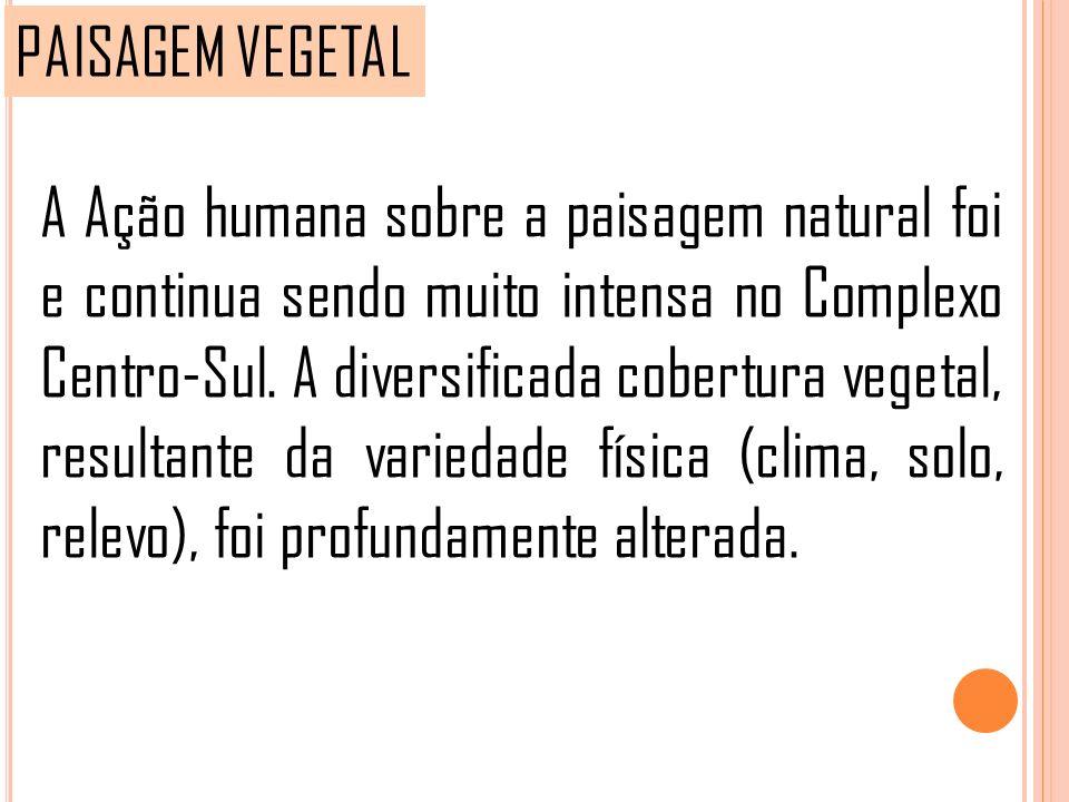 PAISAGEM VEGETAL A Ação humana sobre a paisagem natural foi e continua sendo muito intensa no Complexo Centro-Sul. A diversificada cobertura vegetal,