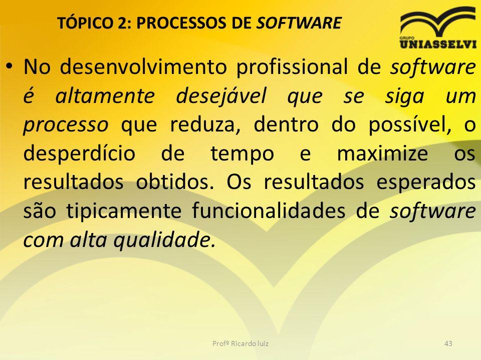 TÓPICO 2: PROCESSOS DE SOFTWARE No desenvolvimento profissional de software é altamente desejável que se siga um processo que reduza, dentro do possível, o desperdício de tempo e maximize os resultados obtidos.