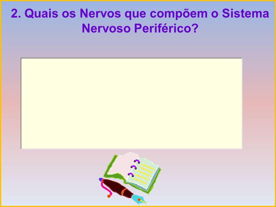 2. Quais os Nervos que compõem o Sistema Nervoso Periférico?