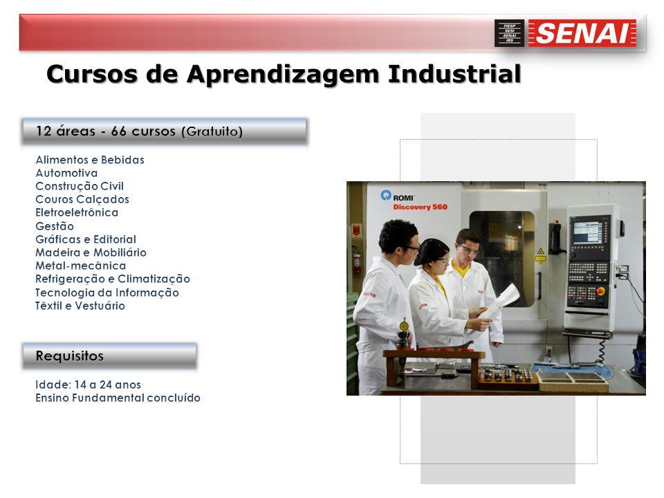 Cursos de Aprendizagem Industrial