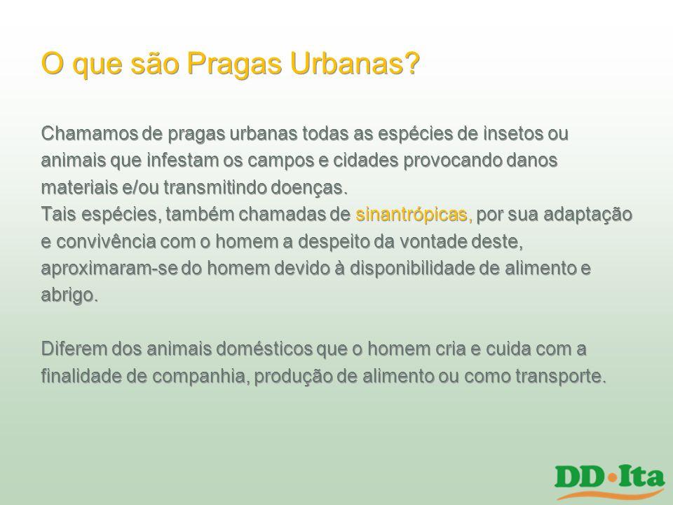 Os 3 As As pragas urbanas precisam de 3 fatores fundamentais para sua sobrevivência e proliferação.