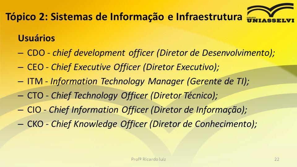 Tópico 2: Sistemas de Informação e Infraestrutura Usuários – CDO - chief development officer (Diretor de Desenvolvimento); – CEO - Chief Executive Off
