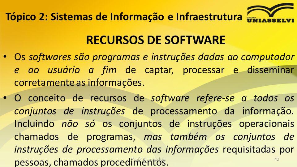 RECURSOS DE SOFTWARE Os softwares são programas e instruções dadas ao computador e ao usuário a fim de captar, processar e disseminar corretamente as