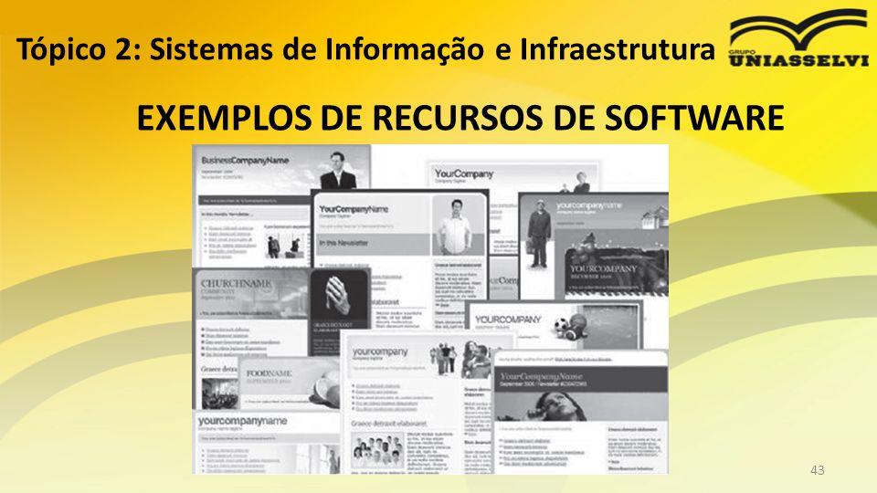 EXEMPLOS DE RECURSOS DE SOFTWARE Tópico 2: Sistemas de Informação e Infraestrutura Profº Ricardo luiz43