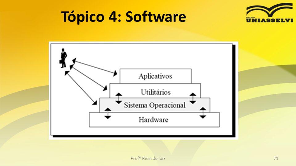 Profº Ricardo luiz71 Tópico 4: Software