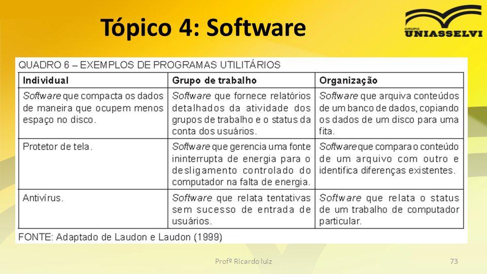 Profº Ricardo luiz73 Tópico 4: Software