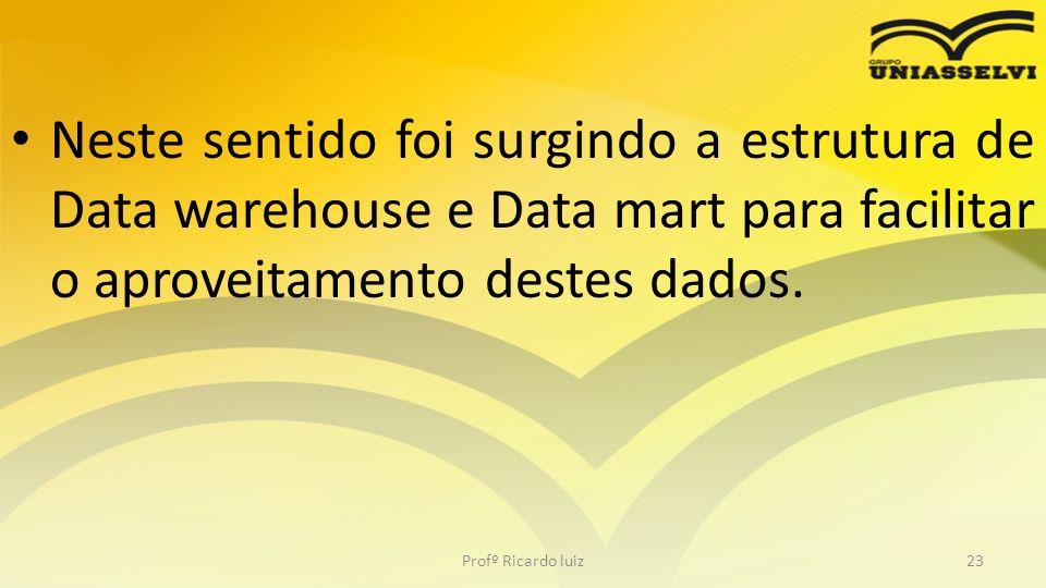 Neste sentido foi surgindo a estrutura de Data warehouse e Data mart para facilitar o aproveitamento destes dados. Profº Ricardo luiz23