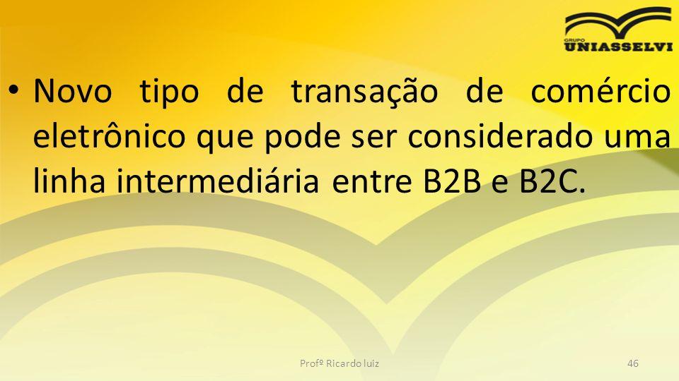 Novo tipo de transação de comércio eletrônico que pode ser considerado uma linha intermediária entre B2B e B2C. Profº Ricardo luiz46