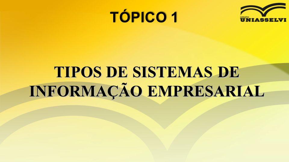 TIPOS DE SISTEMAS DE INFORMAÇÃO EMPRESARIAL