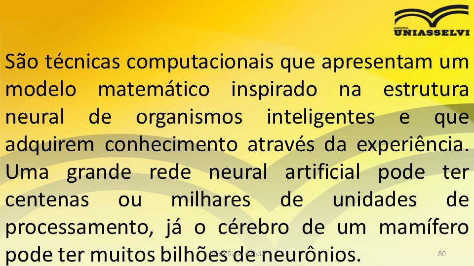 São técnicas computacionais que apresentam um modelo matemático inspirado na estrutura neural de organismos inteligentes e que adquirem conhecimento a
