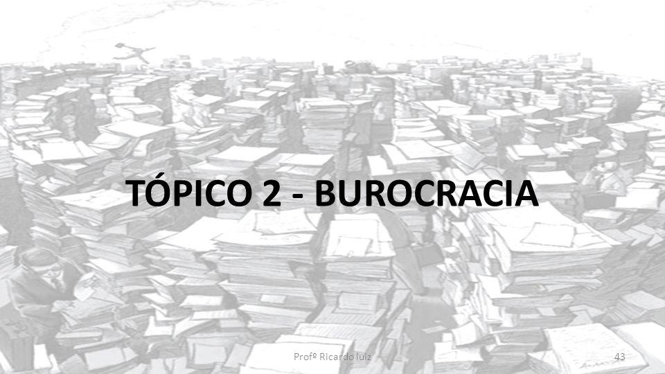 TÓPICO 2 - BUROCRACIA Profº Ricardo luiz43