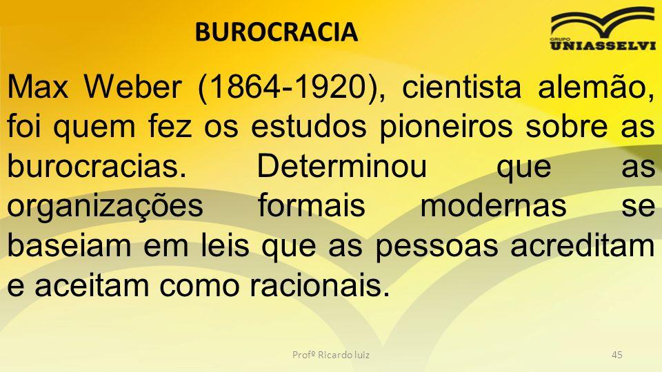 BUROCRACIA Profº Ricardo luiz45 Max Weber (1864-1920), cientista alemão, foi quem fez os estudos pioneiros sobre as burocracias. Determinou que as org