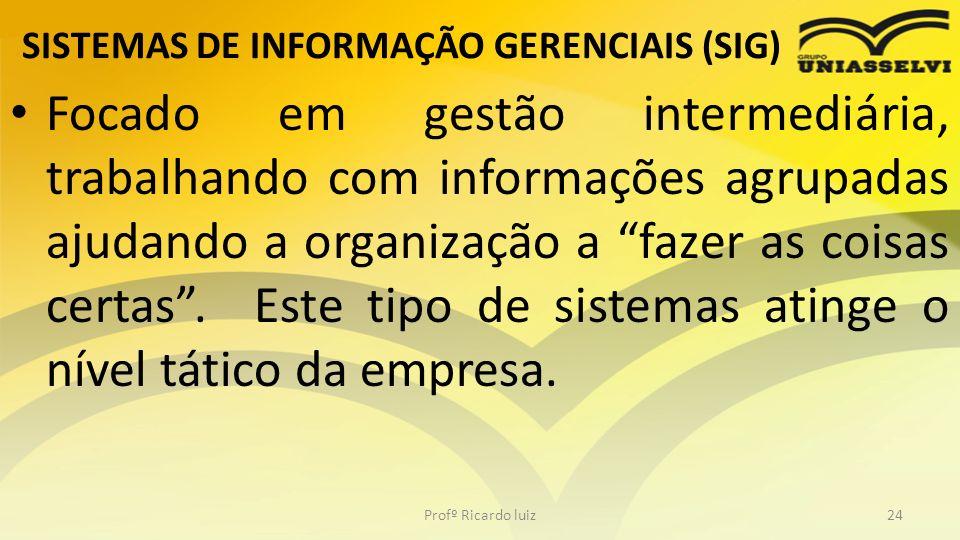 SISTEMAS DE INFORMAÇÃO GERENCIAIS (SIG) Focado em gestão intermediária, trabalhando com informações agrupadas ajudando a organização a fazer as coisas
