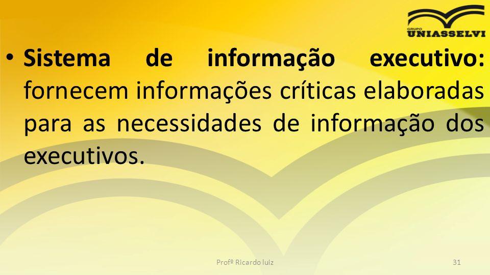 Sistema de informação executivo: fornecem informações críticas elaboradas para as necessidades de informação dos executivos. Profº Ricardo luiz31