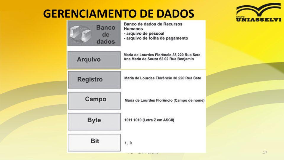 GERENCIAMENTO DE DADOS Profº Ricardo luiz47