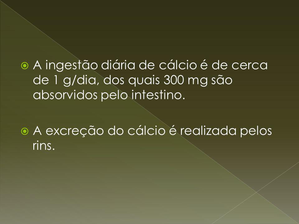 A ingestão diária de cálcio é de cerca de 1 g/dia, dos quais 300 mg são absorvidos pelo intestino. A excreção do cálcio é realizada pelos rins.