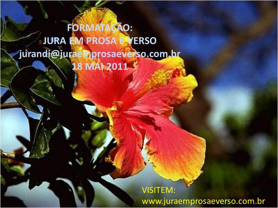 FORMATAÇÃO: JURA EM PROSA E VERSO jurandi@juraemprosaeverso.com.br 18 MAI 2011 VISITEM: www.juraemprosaeverso.com.br