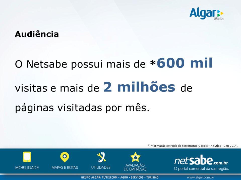 Audiência O Netsabe possui mais de * 600 mil visitas e mais de 2 milhões de páginas visitadas por mês. *Informação extraída da ferramenta Google Analy