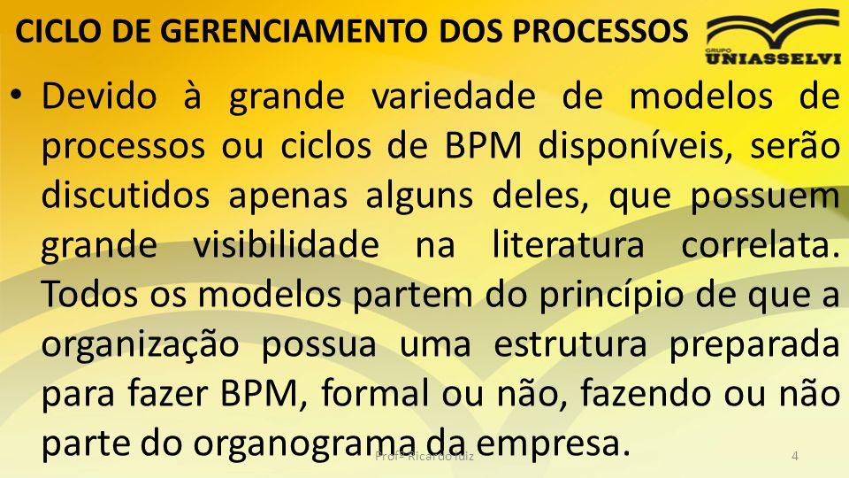 CICLO DE GERENCIAMENTO DOS PROCESSOS Devido à grande variedade de modelos de processos ou ciclos de BPM disponíveis, serão discutidos apenas alguns de
